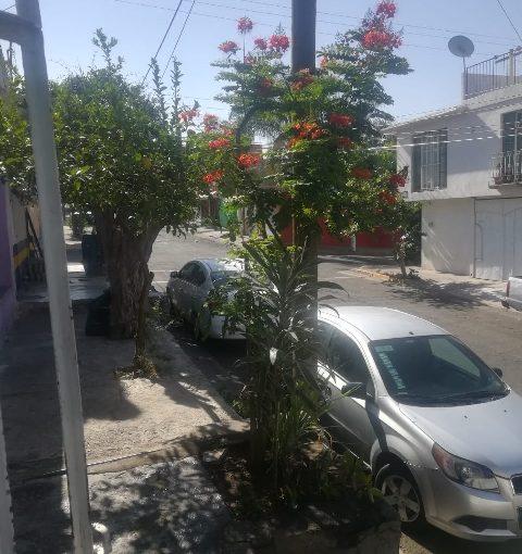 Venta de Casas en Oblatos, Guadalajara